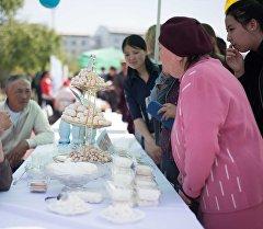 Кыргыз-Түрк Манас университетинин кампусунда улуттук курут фестивалы.
