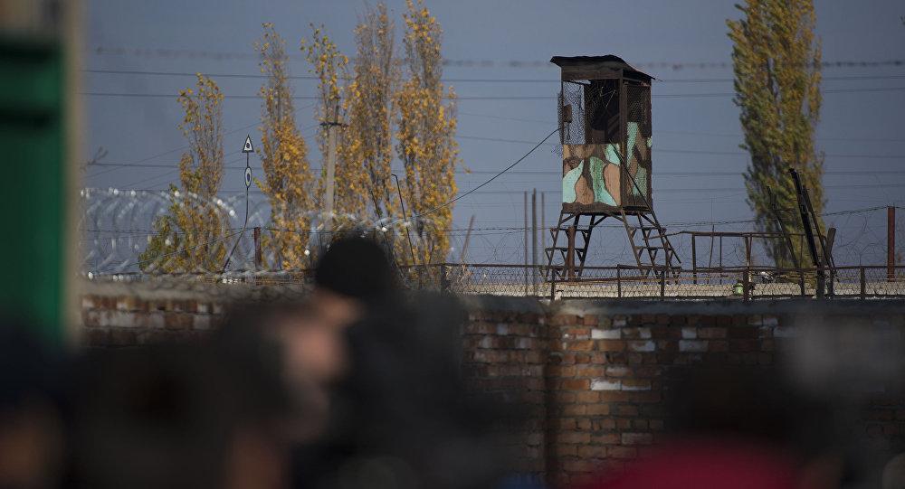 Смотровая башня. Архивное фото