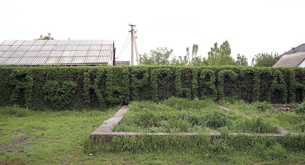 Надпись вырезанная из кустов Я люблю Кыргызстан