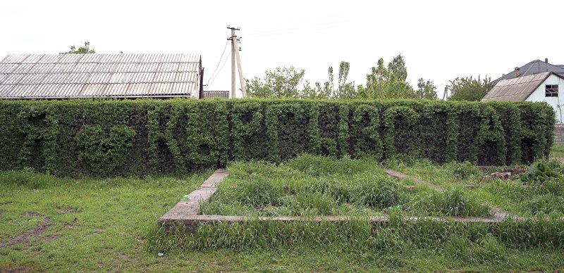 Надпись, вырезанная из кустов, в районе Ак-Орго в Бишкеке
