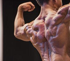 Мышцы. Архивное фото