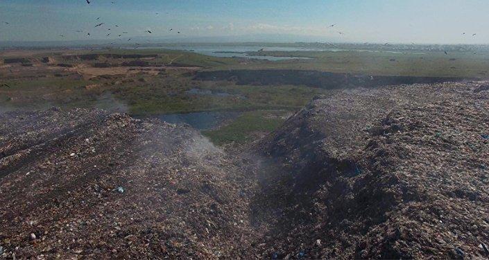 Бишкекская городская свалка глазами пролетающих птиц