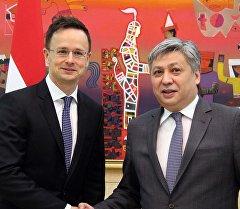 Кыргызстандын тышкы иштер министри Эрлан Абдылдаев венгриялык кесиптеши Петер Сийярто менен жолукту.