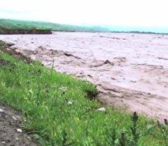 Көбүрүп-жабырган Көгарт дарыясы жээкти улам жеп келе жатат