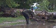 Град, потоп и погубленные семена. Последствия стихии в Таласе