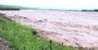 Мощные паводки на реке Когарт смывают рисовые поля в Сузаке