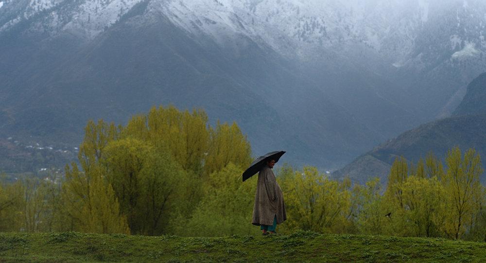 Пастух с зонтом во время дождя. Архивное фото