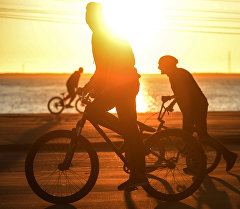 Велосипедчи. Архив