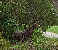 Фигура оленя сделанная из веток. Архивное фото