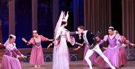 Германиянын балет бийчилери Ак куу көлүн Бишкекте бийлешти