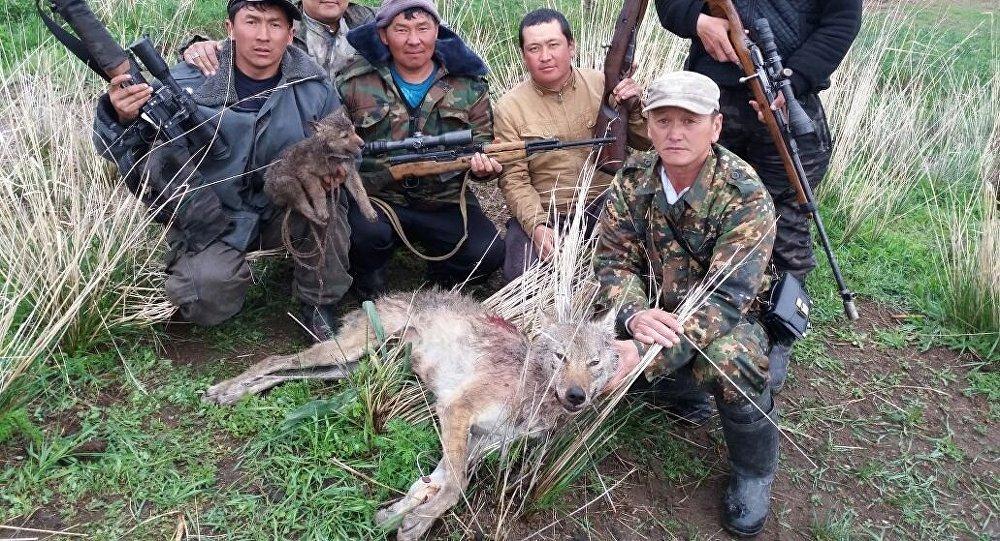 Жители села Кара-Суу с убитым ими волком