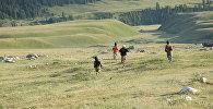 Дети бегут в по джайлоо. Архивное фото