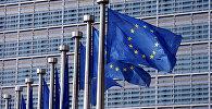 Европа биримдигинин желеги. Архивдик сүрот