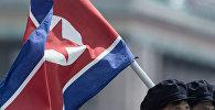 Түндүк Кореянын желеги. Архив