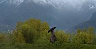 Пастух с зонтом во время дождя на горной местности. Архивное фото