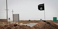 Флаг сторонников Исламского государства Ирака и Леванта