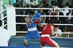 Мушкерлер VII эл аралык бокс боюнча турнирде.