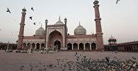Индиядагы Джама-Масджид мечити. Архив