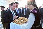 Дмитрий Медведевди ;Манас аэропортунан боорсок жана гүл менен тосуп алды