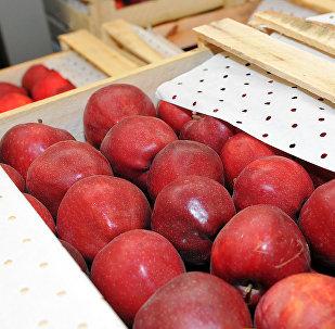 Ящики с яблоками в логистическом центре. Архивное фото