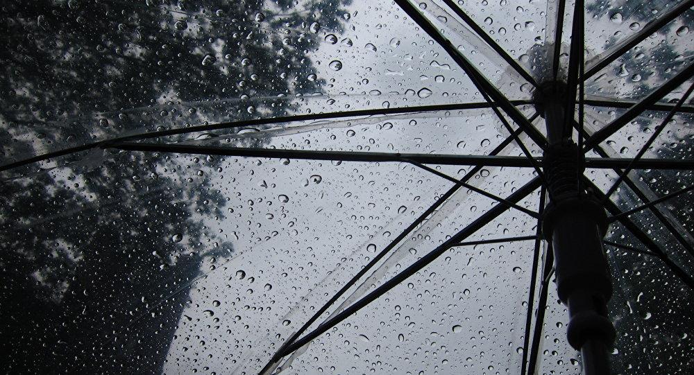 Открытый зонт под дождем. Архивное фото