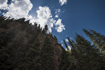Горное ущелье Джеты-Огуз в Иссык-Кульской области