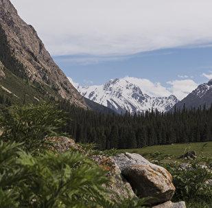 Вид на горное ущелье Джеты-Огуз в Иссык-Кульской области. Архивное фото