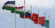 Флаги государств-участников совместных учений стран Шанхайской организации сотрудничества. Архивное фото