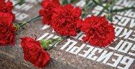 Красные гвоздики на памятнике. Архивное фото