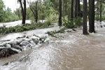 Талас дарыясынын суусу эки эсе көбөйүп, үйлөрдү каптады. Жеринен алынган