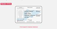 Эскиз нового биометрического паспорта в Кыргызской Республике