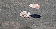 Спускаемая капсула корабля Союз ТМА-19М с членами 47-й экспедиции — космонавтом Роскосмоса Юрием Маленченко, астронавтом NASA Тимоти Копрой и астронавтом ЕКА Тимоти Пиком в Казахстане.