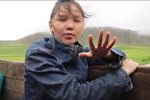 Эзелкинин жомогу... Шаардык кыз Манас айтып жайлоого баратат