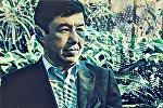 Фото экс-премьер-министра КР Темира Сариева обработанное приложением Prisma