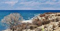 Вид на озеро Иссык-Куль с берега, архивное фото