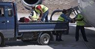 Сотрудники аэропорта загружают вещи пассажиров в самолет. Архивное фото