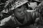 Долгий путь к объединению Вьетнама. Кадры из архива