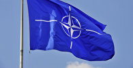 НАТО желеги. Архив