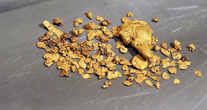 Золото, добытое на участке золотодобычи. Архивное фото
