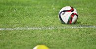 Футбольный мяч на газоне. Архивное фото