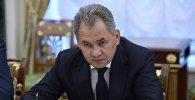 Архивное фото министра обороны РФ Сергея Шойгу