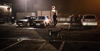 Группа молодых людей проверяет припаркованные автомобили. Архивное фото