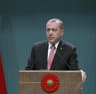 Эрдоган объяснил, для чего в стране вводится чрезвычайное положение