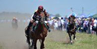 Конные бега. Архивное фото