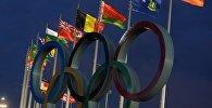 Подготовка к зимней Олимпиаде 2014 в Сочи