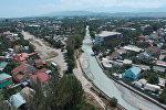 Вместо каких деревьев в Ботсаду могут построить дорогу — аэросъемка