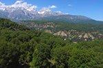Уникальный Кыргызстан: реликтовые леса Арсланбоба