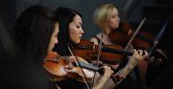 Камерный оркестр. Архивное фото