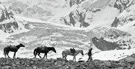Путник с лошадьми в горах. Архивное фото
