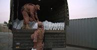 Российские военные отправили жителям Алеппо свыше 18 тонн гумпомощи